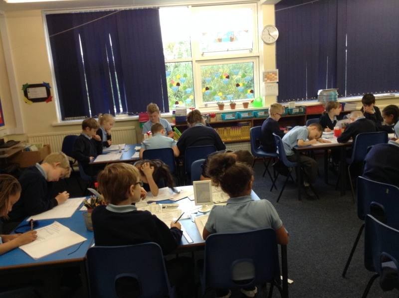 Class 5 at work