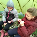 forest school week7 yr6 011
