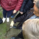 forest school wk 3 and 4 139