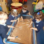 We have found long bones from a T-rex!